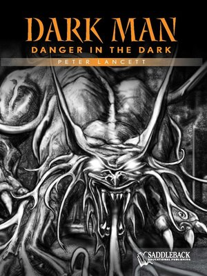 cover image of Danger in the Dark (Orange Series)