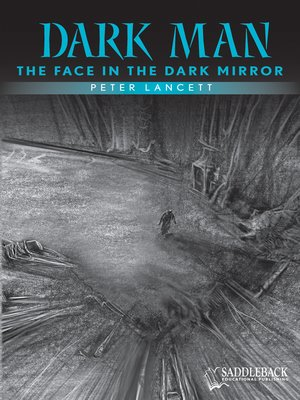 cover image of The Face in the Dark Mirror (Blue Series)