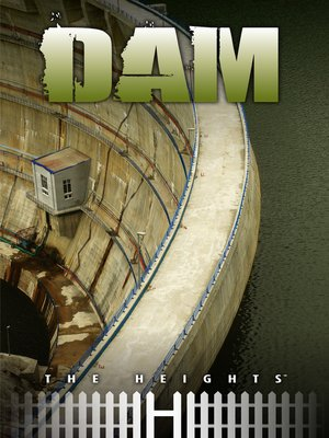 cover image of Dam
