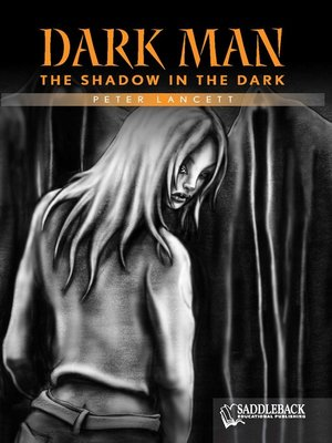 cover image of The Shadow in the Dark (Orange Series)