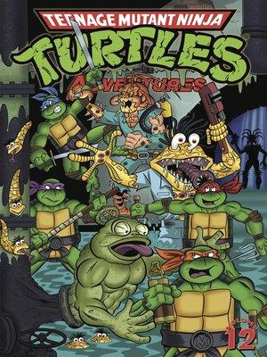 cover image of Teenage Mutant Ninja Turtles Adventures (1989), Volume 12