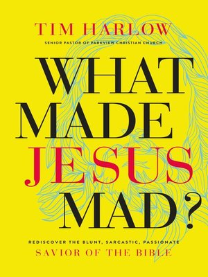 cover image of What Made Jesus Mad?