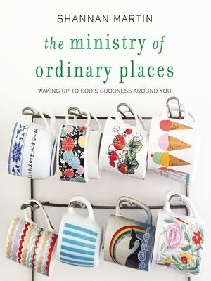 cover image of The Ministry of Ordinary Places