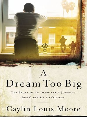 cover image of A Dream Too Big