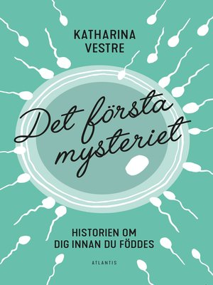 cover image of Det första mysteriet