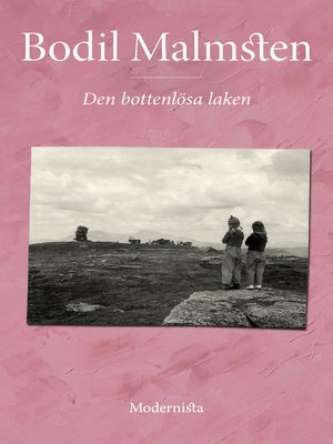 cover image of Den bottenlösa laken
