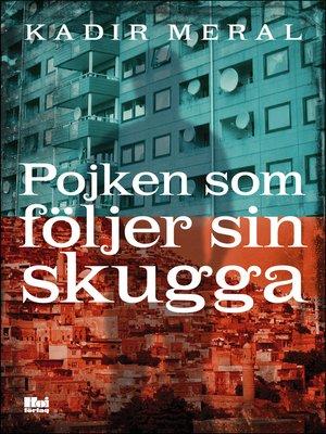 cover image of Pojken som följer sin skugga