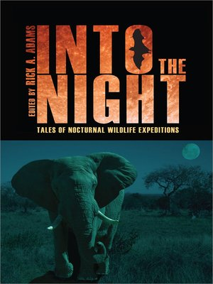 cover image of Into the Night