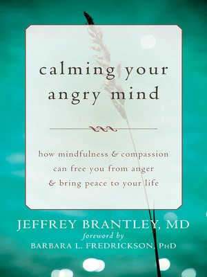 cover image of Calming Your Angry Mind