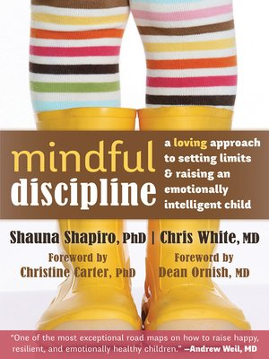 cover image of Mindful Discipline