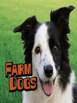 cover image of Farm Dogs