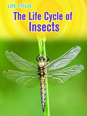 cover image of The Life Cycle of Insects