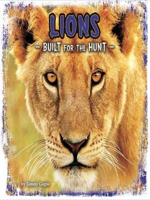 cover image of Lions