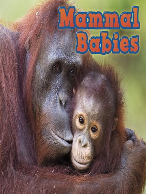 cover image of Mammal Babies