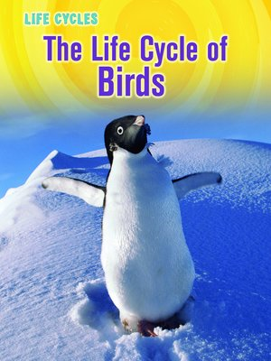 cover image of The Life Cycle of Birds