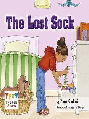 cover image of The Lost Sock