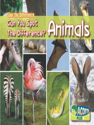 cover image of Spot the Difference Animals