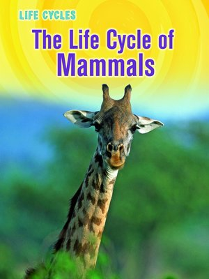 cover image of The Life Cycle of Mammals