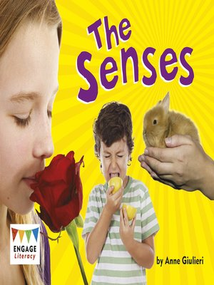 cover image of The Senses