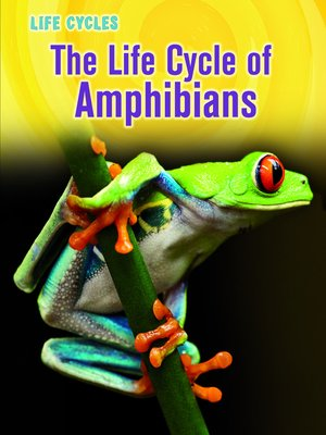 cover image of The Life Cycle of Amphibians