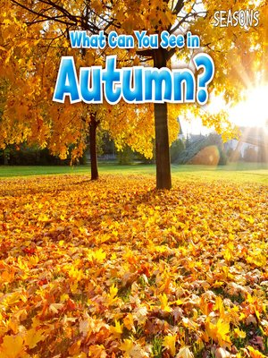 cover image of What Can You See In Autumn?