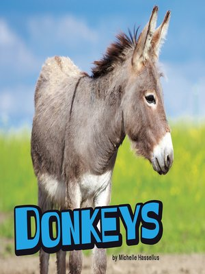 cover image of Donkeys