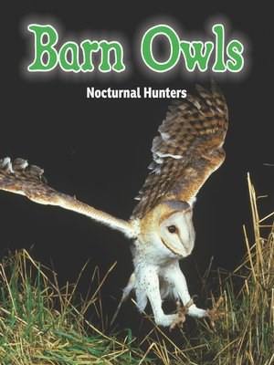 cover image of Barn Owls