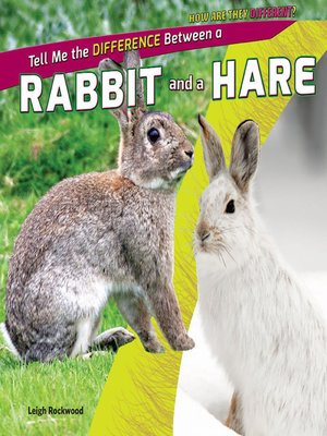 cover image of Tell Me the Difference Between a Rabbit and a Hare