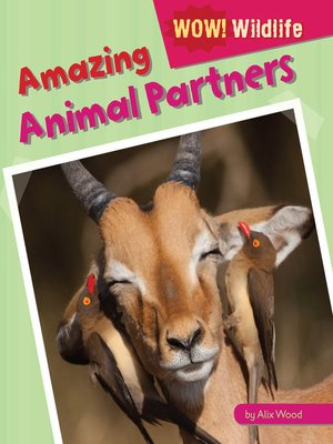 cover image of Amazing Animal Partners