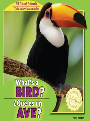 cover image of What's a Bird? / ¿Qué es un ave?