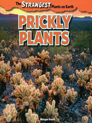 cover image of Prickly Plants