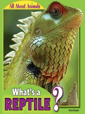 cover image of What's a Reptile?