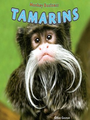 cover image of Tamarins