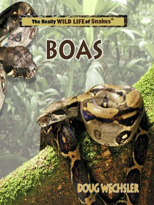 cover image of Boas