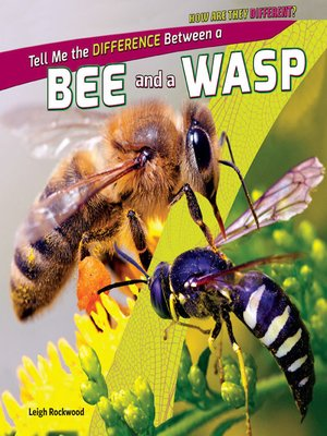cover image of Tell Me the Difference Between a Bee and a Wasp