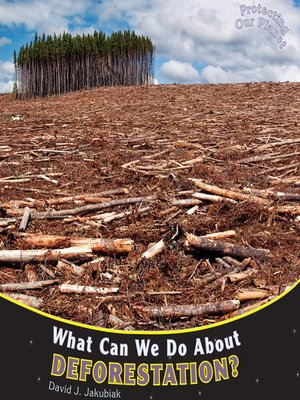 cover image of What Can We Do About Deforestation?