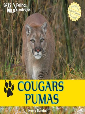 cover image of Cougars / Pumas