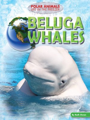 cover image of Beluga Whales