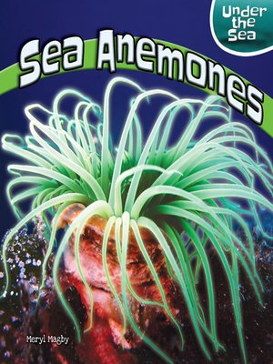 cover image of Sea Anemones