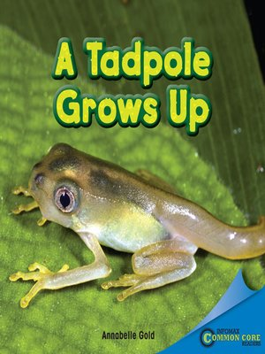 cover image of A Tadpole Grows Up