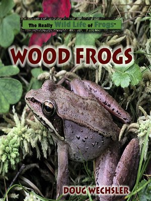 cover image of Wood Frogs
