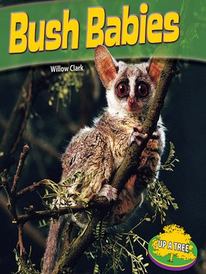 cover image of Bush Babies