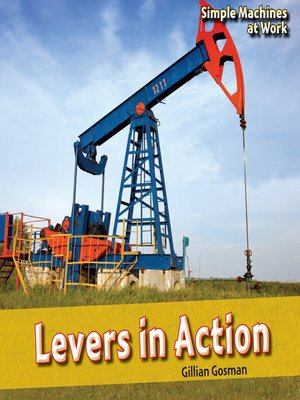 cover image of Levers in Action