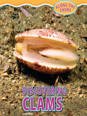 cover image of Discovering Clams