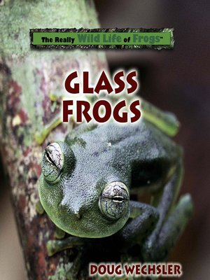 cover image of Glass Frogs