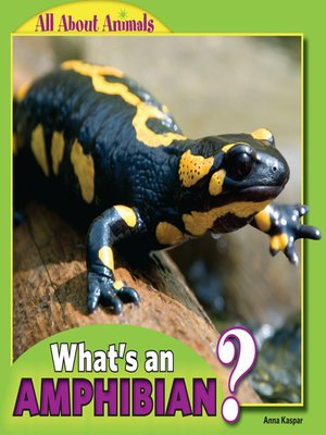 cover image of What's an Amphibian?