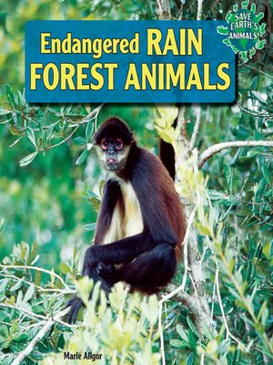 cover image of Endangered Rain Forest Animals