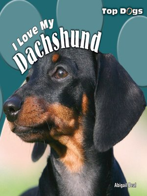 cover image of I Love My Dachshund