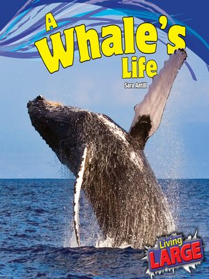 cover image of A Whale's Life