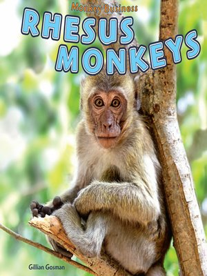 cover image of Rhesus Monkeys